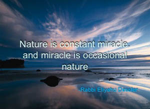 nature miracle